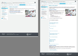 Comparison of original and revised versions of Tradesecrets' What's an Occupation page